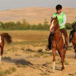 آموزش مقدماتی استقامت اسب (300 ساعته بمدت 3 ماه)
