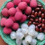 دوره آفت کش ها در میوه های گرمسیری و نیمه گرمسیری – a- 13118